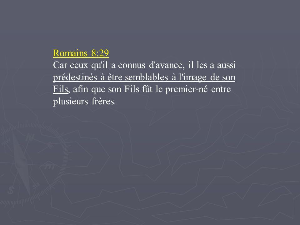Romains 8:29
