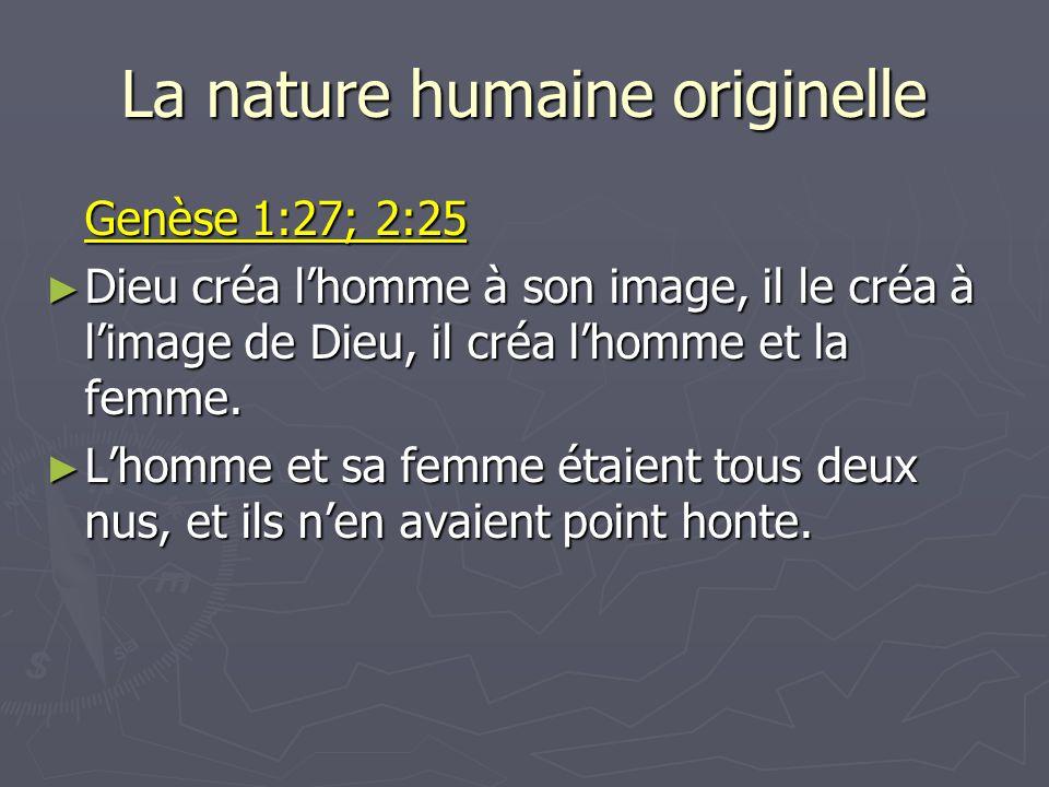 La nature humaine originelle