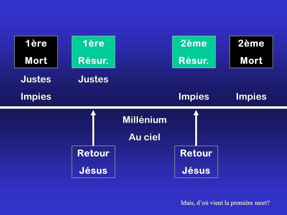 1ère Mort 1ère Résur. 2ème Résur. 2ème Mort Retour Jésus Retour Jésus