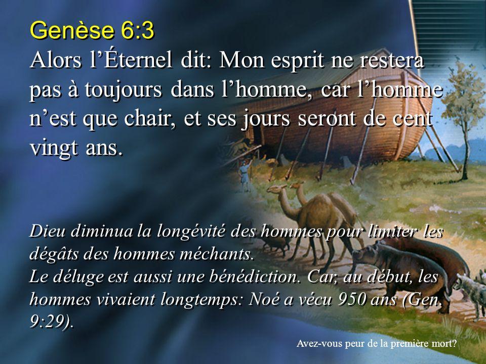 Genèse 6:3