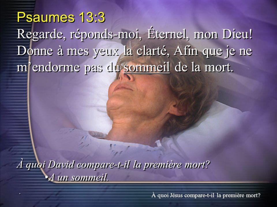 Psaumes 13:3 Regarde, réponds-moi, Éternel, mon Dieu! Donne à mes yeux la clarté, Afin que je ne m'endorme pas du sommeil de la mort.