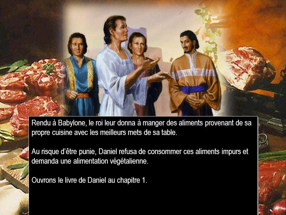 Rendu à Babylone, le roi leur donna à manger des aliments provenant de sa propre cuisine avec les meilleurs mets de sa table.