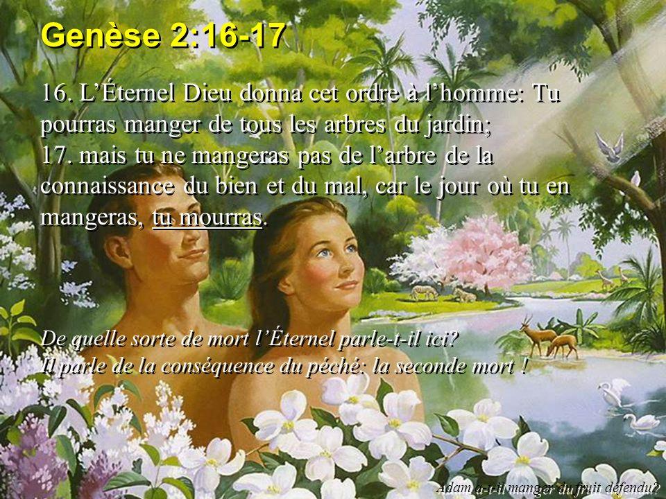 Genèse 2:16-17 16. L'Éternel Dieu donna cet ordre à l'homme: Tu pourras manger de tous les arbres du jardin;