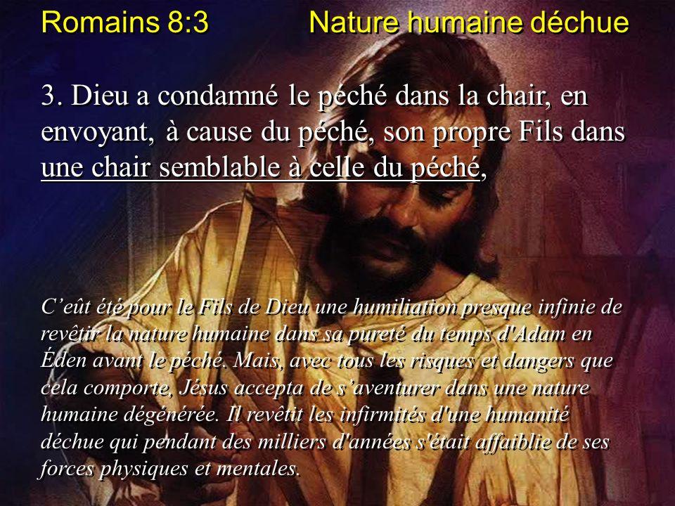 Romains 8:3 Nature humaine déchue