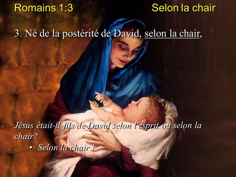 Romains 1:3 Selon la chair