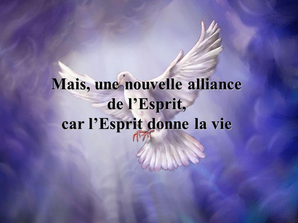 Mais, une nouvelle alliance de l'Esprit, car l'Esprit donne la vie