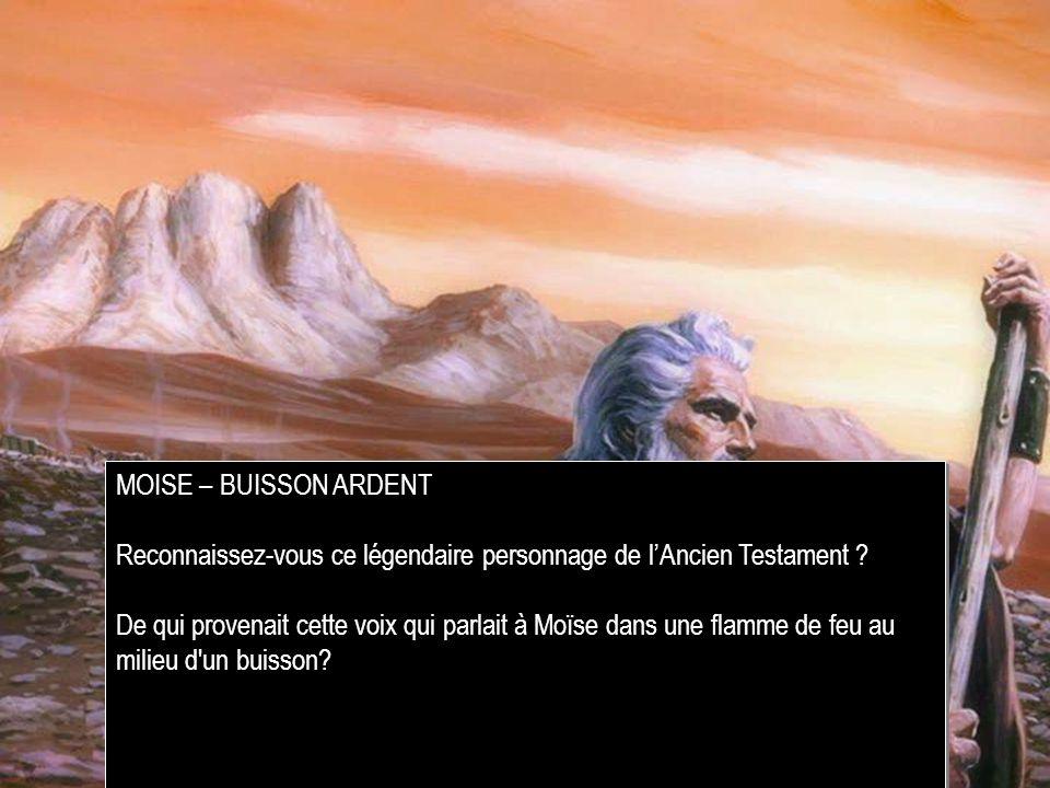 MOISE – BUISSON ARDENT Reconnaissez-vous ce légendaire personnage de l'Ancien Testament