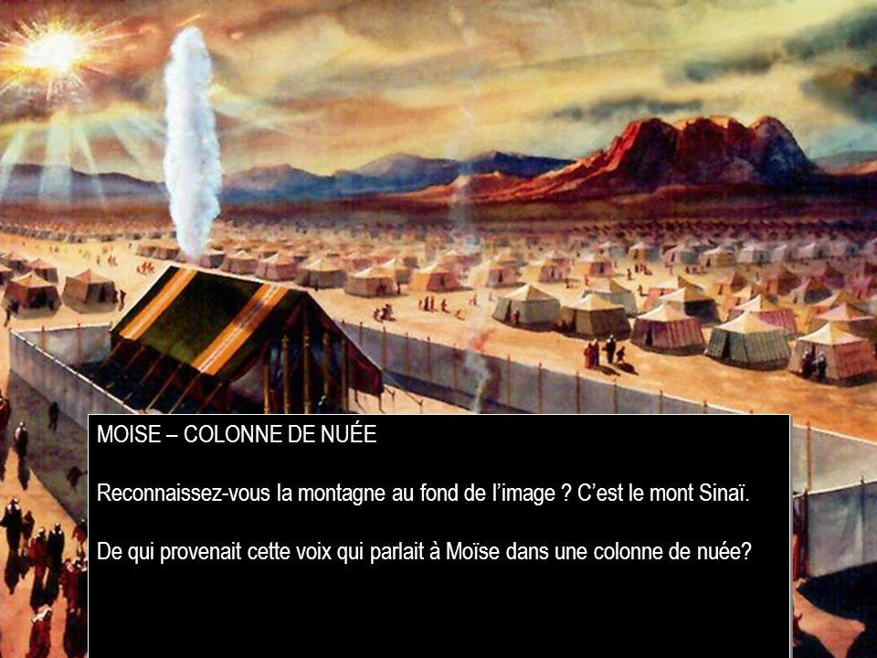 MOISE – COLONNE DE NUÉE Reconnaissez-vous la montagne au fond de l'image C'est le mont Sinaï.