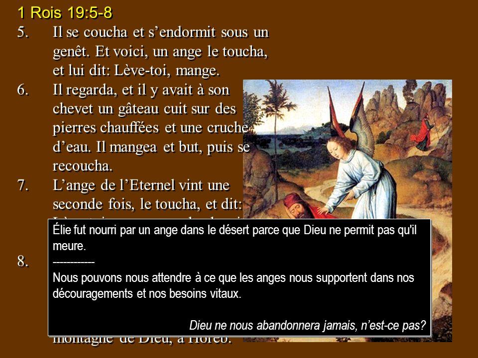 1 Rois 19:5-85. Il se coucha et s'endormit sous un genêt. Et voici, un ange le toucha, et lui dit: Lève-toi, mange.