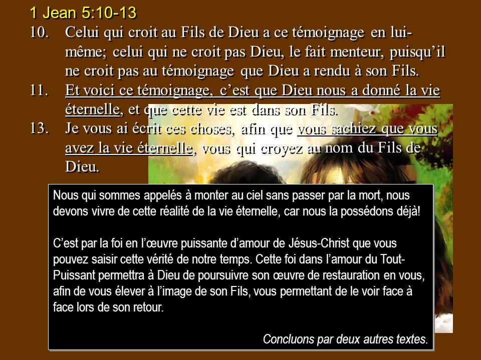 1 Jean 5:10-13