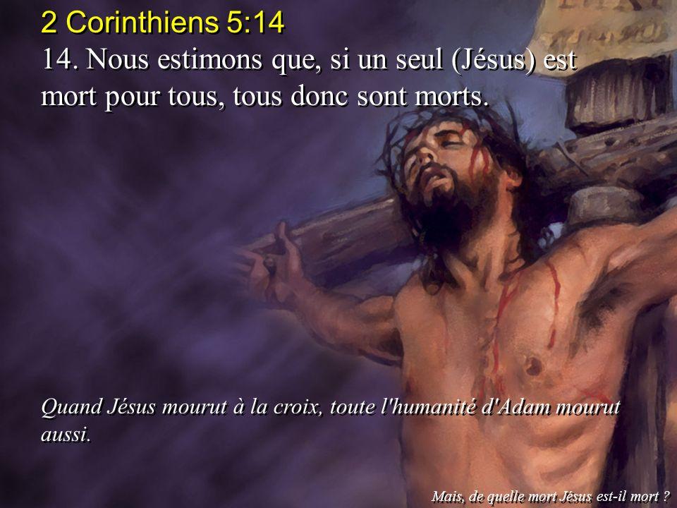 2 Corinthiens 5:14 14. Nous estimons que, si un seul (Jésus) est mort pour tous, tous donc sont morts.