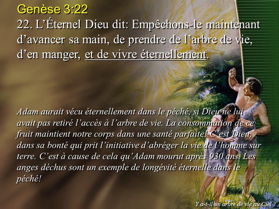 Genèse 3:22 22. L'Éternel Dieu dit: Empêchons-le maintenant d'avancer sa main, de prendre de l'arbre de vie, d'en manger, et de vivre éternellement.