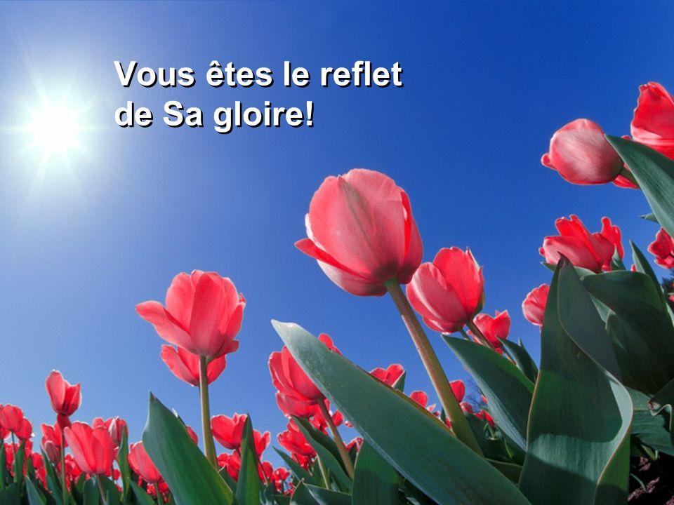 Vous êtes le reflet de Sa gloire!