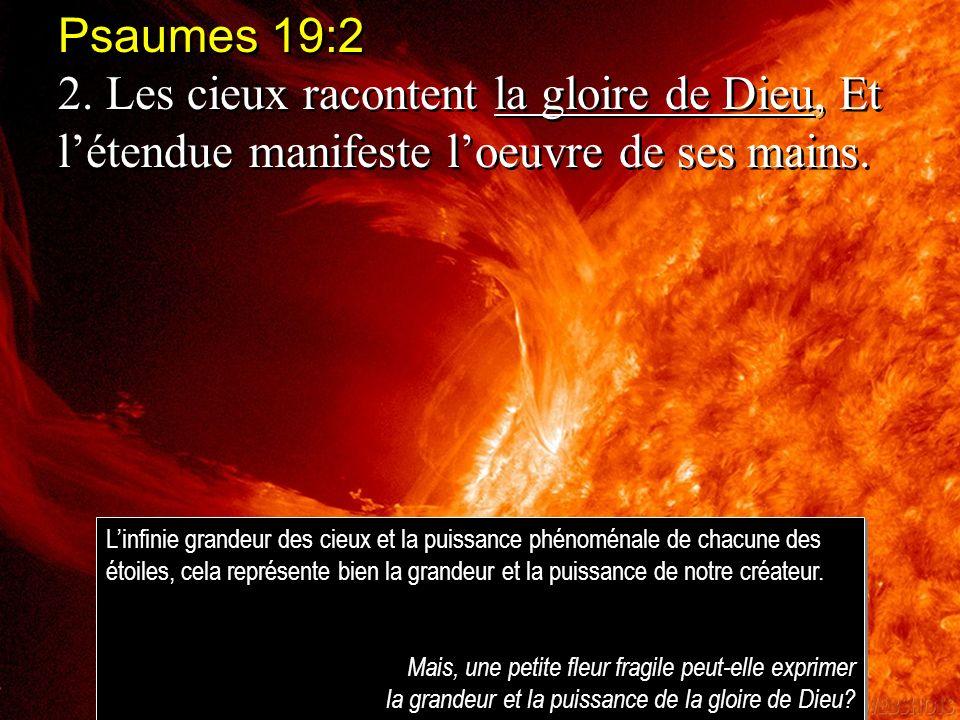 Psaumes 19:2 2. Les cieux racontent la gloire de Dieu, Et l'étendue manifeste l'oeuvre de ses mains.