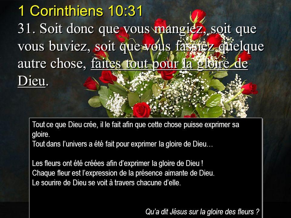 1 Corinthiens 10:31