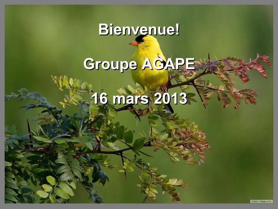 Bienvenue! Groupe AGAPE 16 mars 2013