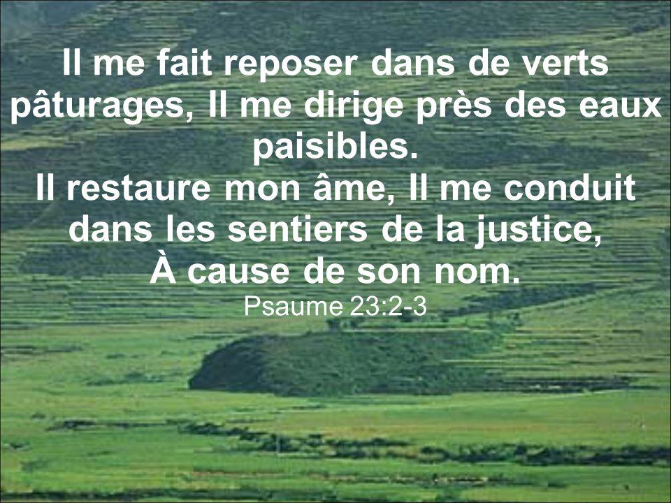 Il restaure mon âme, Il me conduit dans les sentiers de la justice,