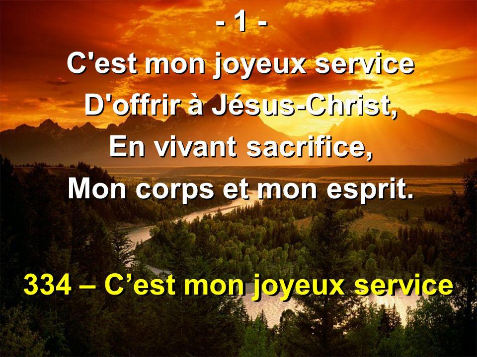 334 – C'est mon joyeux service