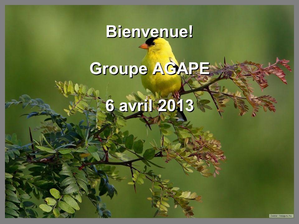 Bienvenue! Groupe AGAPE 6 avril 2013