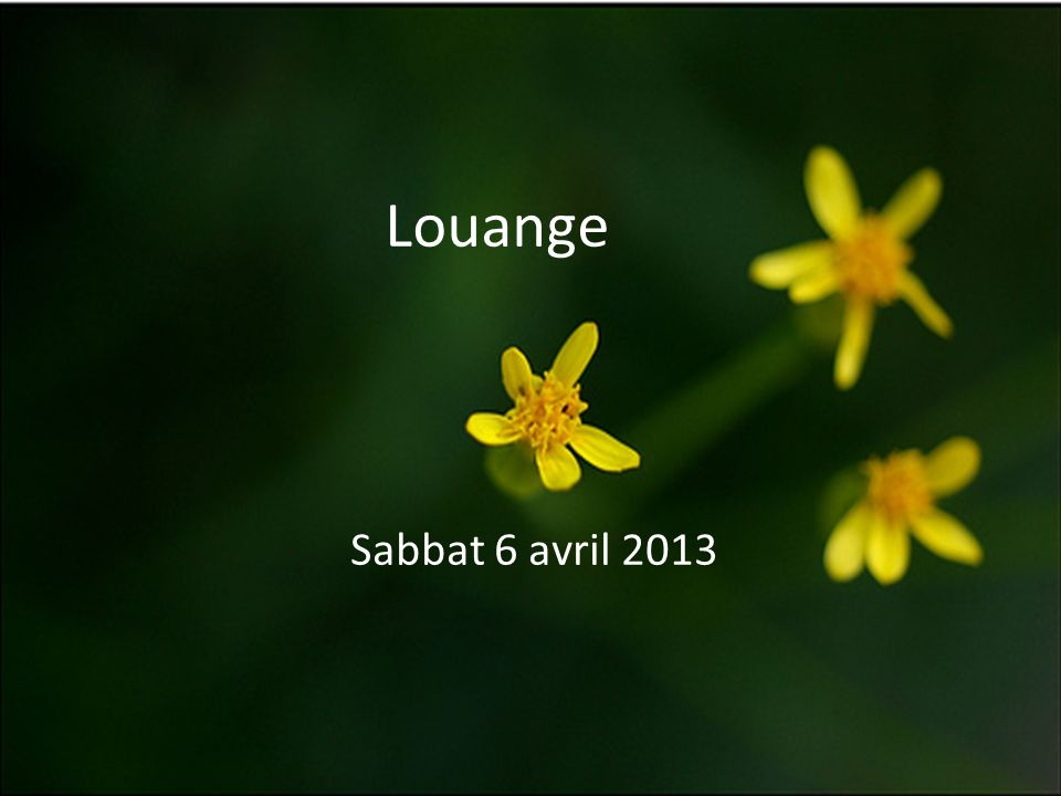 Louange Sabbat 6 avril 2013
