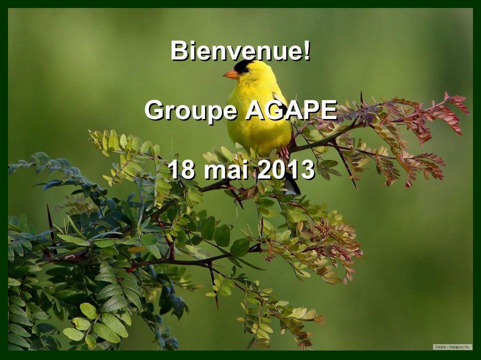 Bienvenue! Groupe AGAPE 18 mai 2013