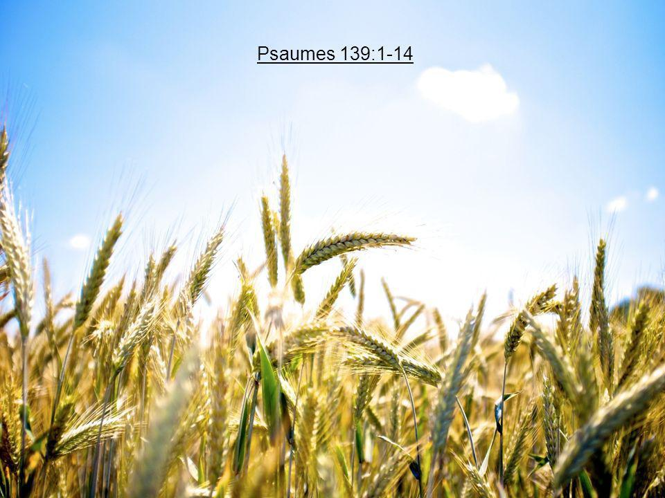 Psaumes 139:1-14