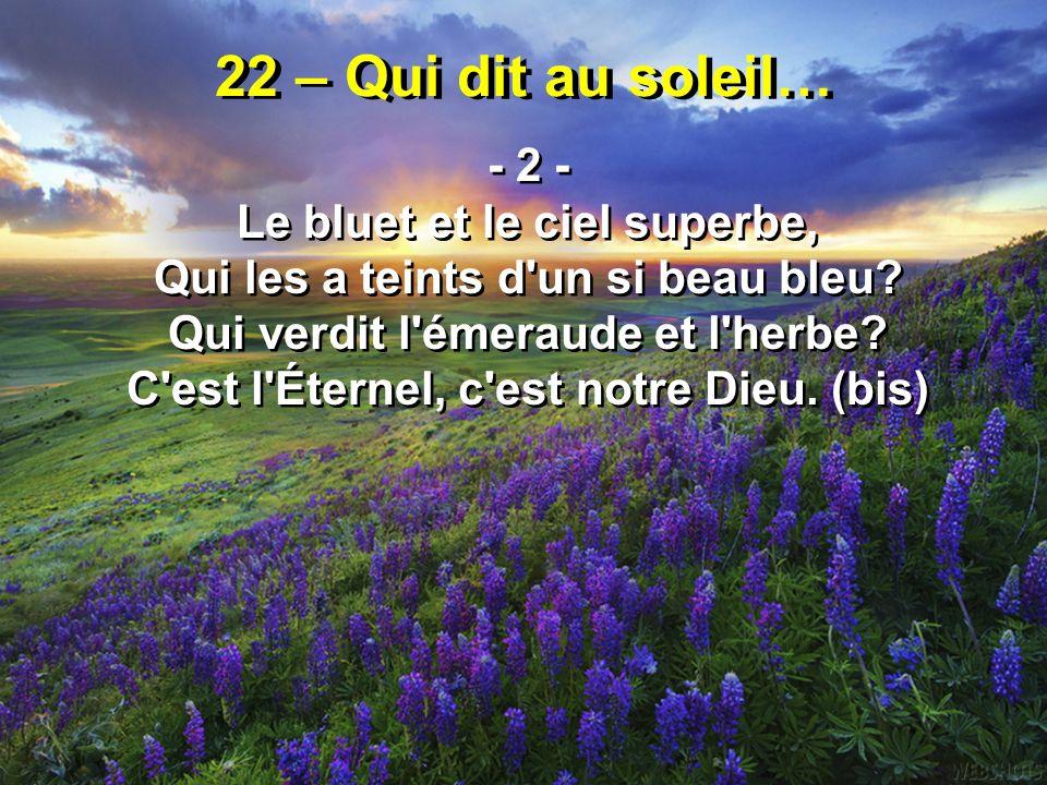 22 – Qui dit au soleil… - 2 - Le bluet et le ciel superbe,