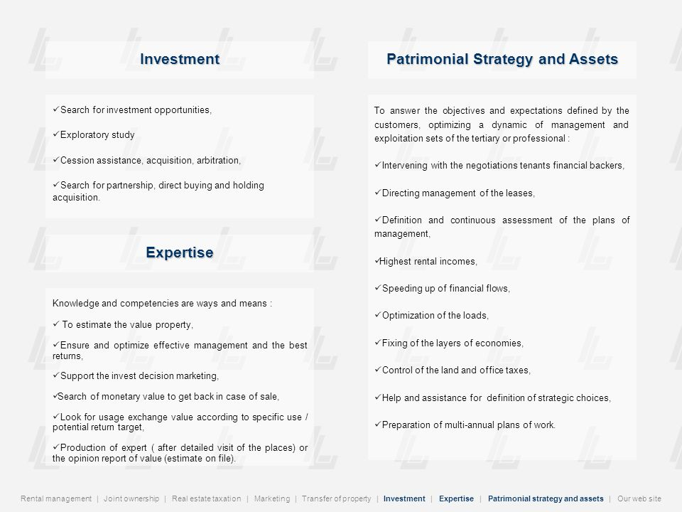 Patrimonial Strategy and Assets