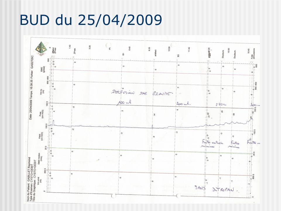 BUD du 25/04/2009
