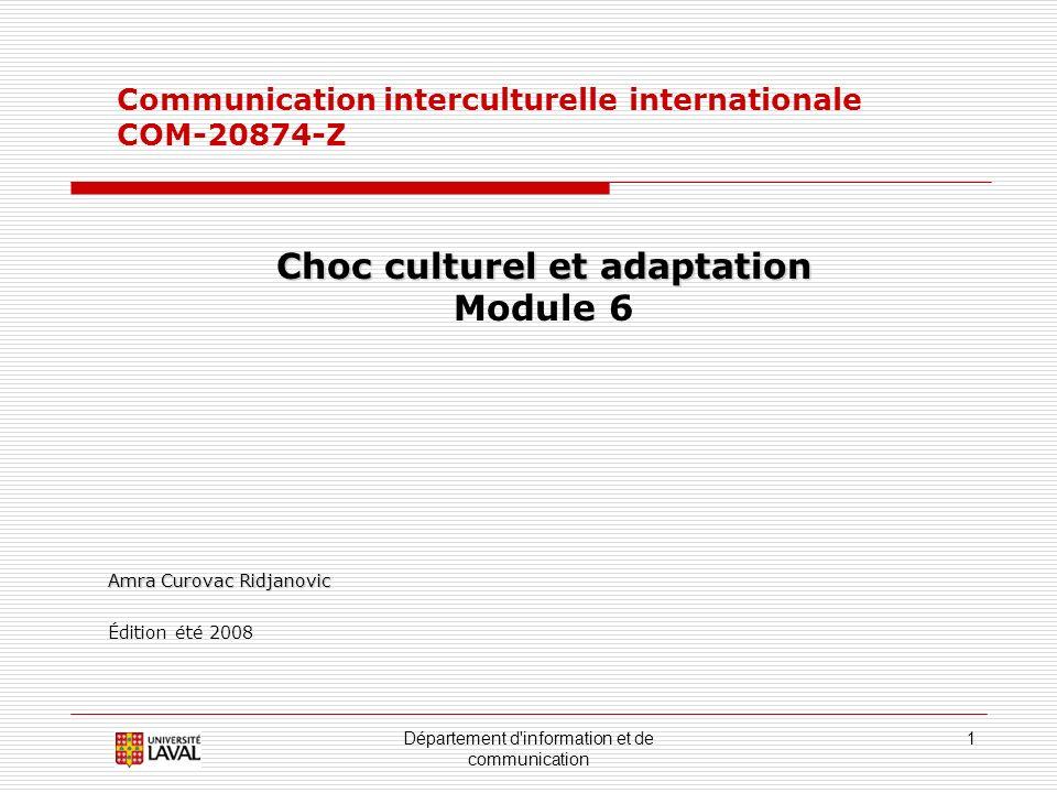 Choc culturel et adaptation