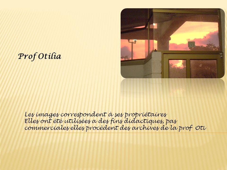 Prof Otilia Les images correspondent à ses propriétaires