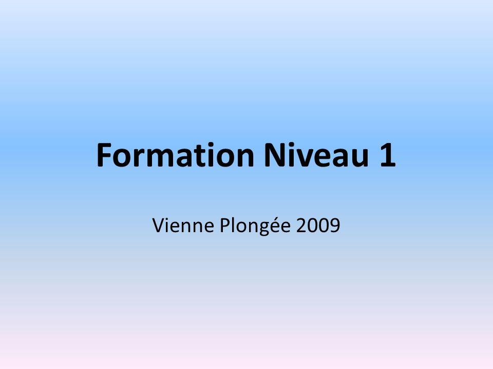 Formation Niveau 1 Vienne Plongée 2009