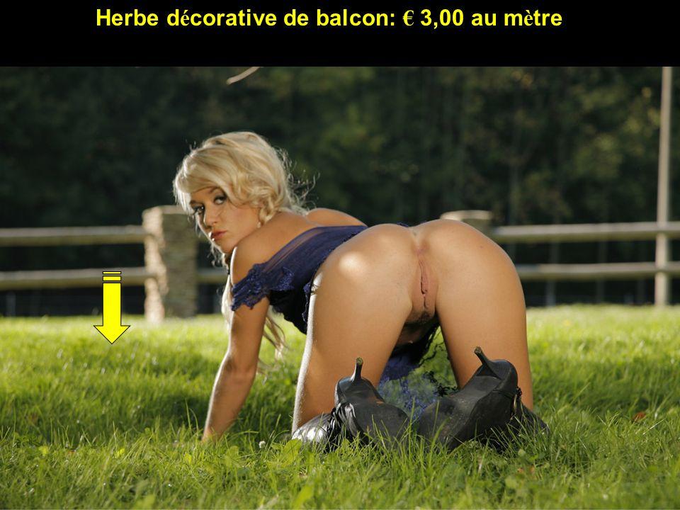 Herbe décorative de balcon: € 3,00 au mètre