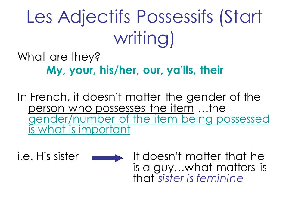 Les Adjectifs Possessifs (Start writing)