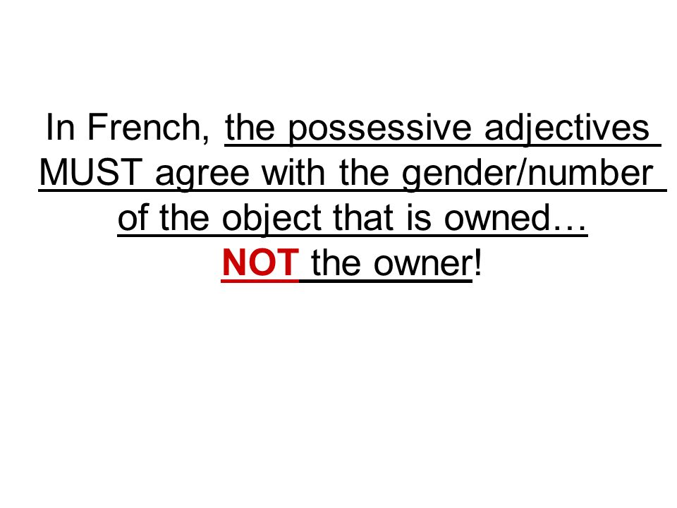 In French, the possessive adjectives MUST agree with the gender/number