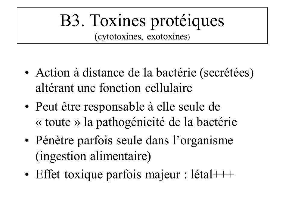 B3. Toxines protéiques (cytotoxines, exotoxines)