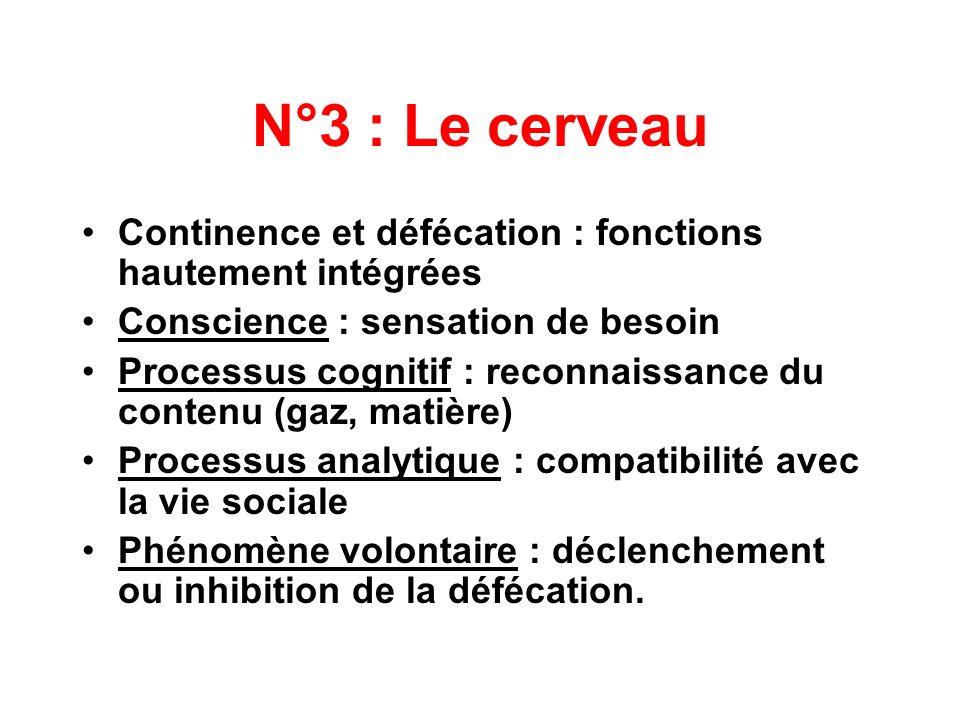 N°3 : Le cerveauContinence et défécation : fonctions hautement intégrées. Conscience : sensation de besoin.