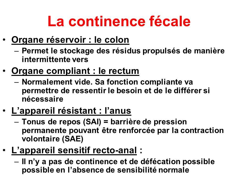 La continence fécale Organe réservoir : le colon