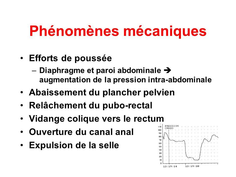 Phénomènes mécaniques
