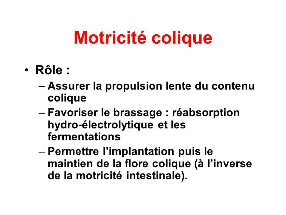 Motricité colique Rôle :