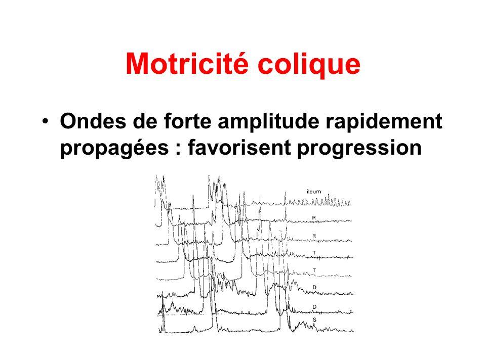 Motricité colique Ondes de forte amplitude rapidement propagées : favorisent progression