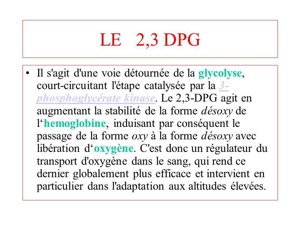 LE 2,3 DPG
