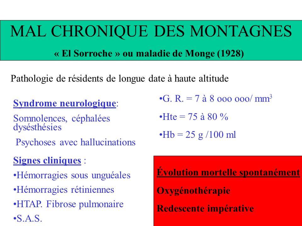 MAL CHRONIQUE DES MONTAGNES