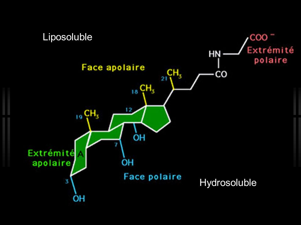 Liposoluble Hydrosoluble