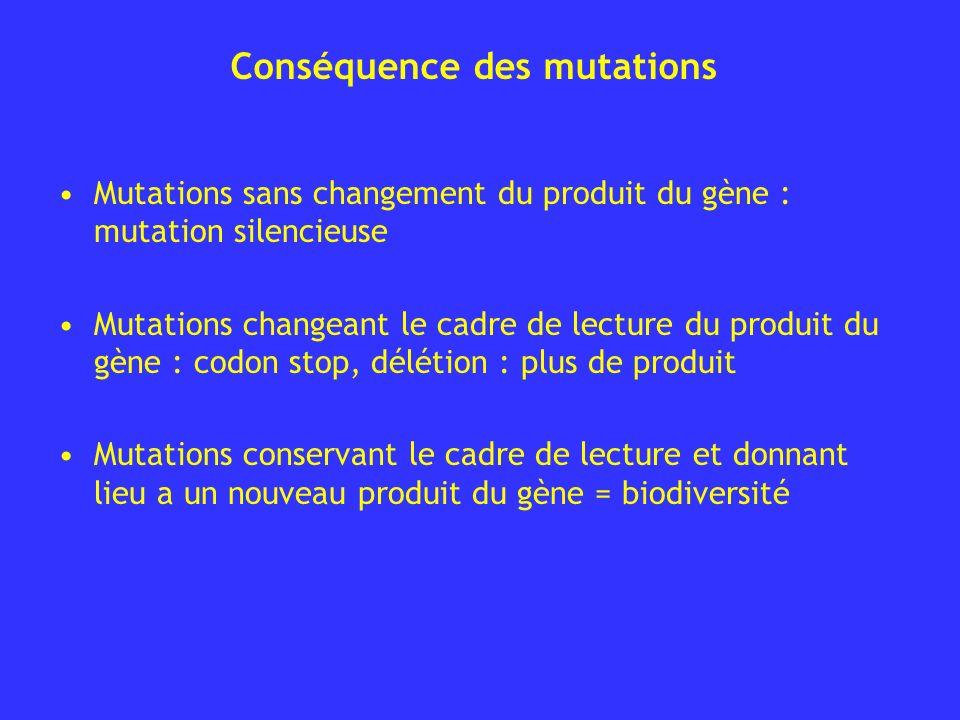 Conséquence des mutations