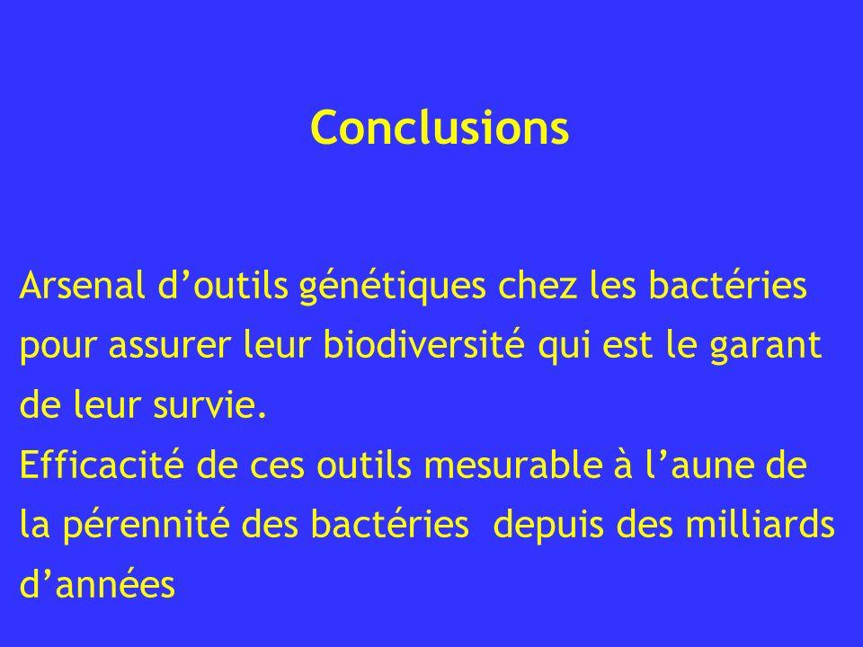 Conclusions Arsenal d'outils génétiques chez les bactéries