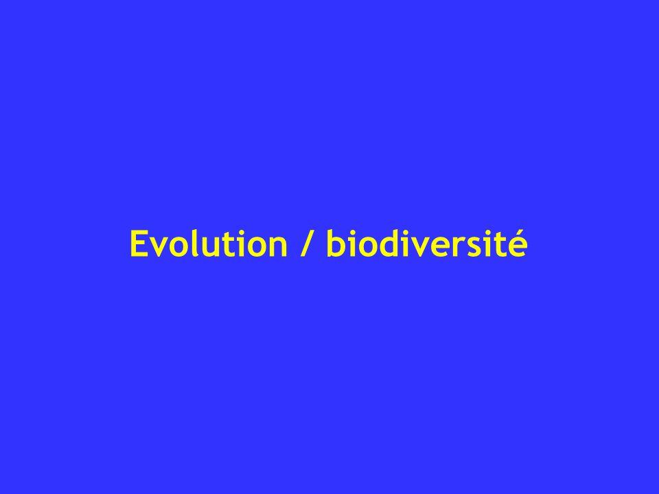 Evolution / biodiversité