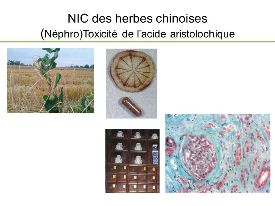 NIC des herbes chinoises (Néphro)Toxicité de l'acide aristolochique