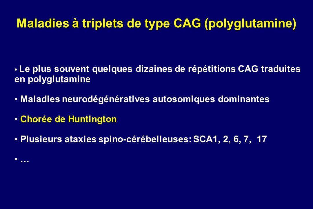 Maladies à triplets de type CAG (polyglutamine)