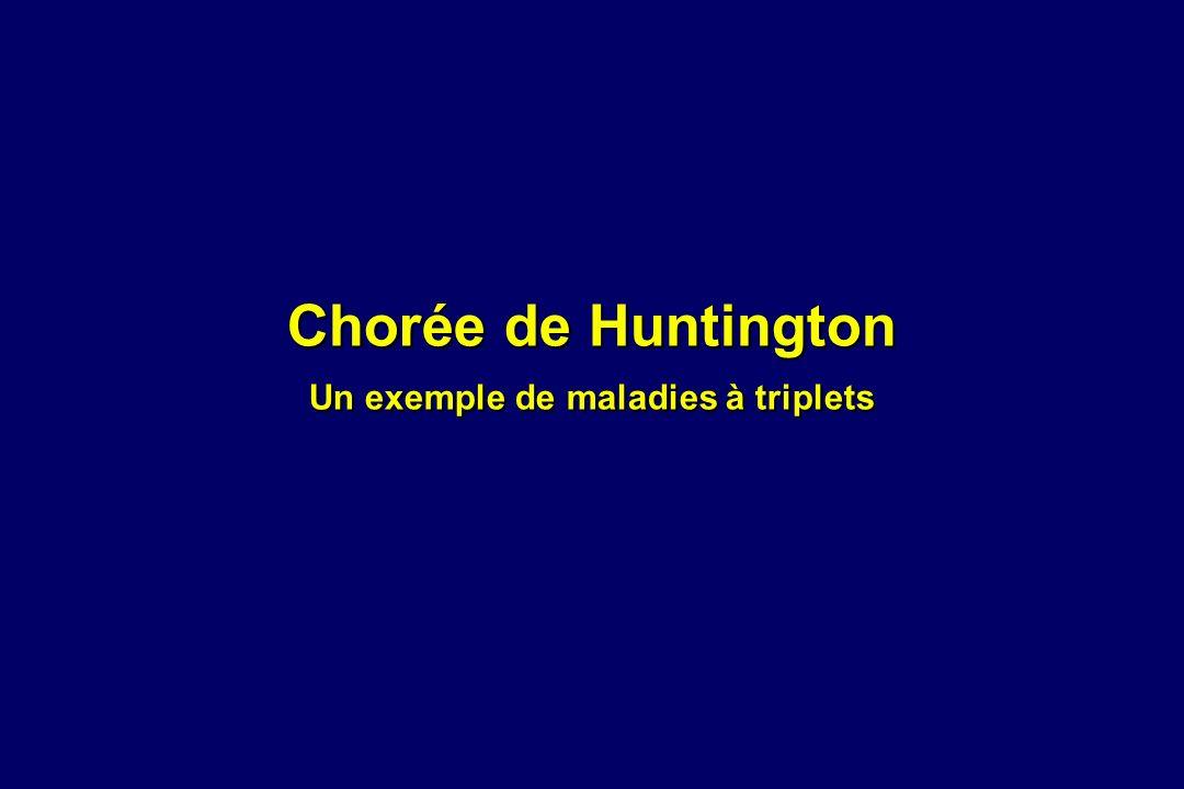 Chorée de Huntington Un exemple de maladies à triplets